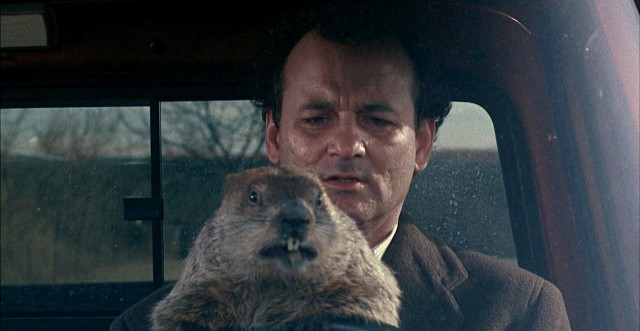 God I love that Punxsutawney Phil. Don't drive angry. Don't drive angry!